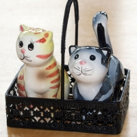 Cat Salt & Pepper Shaker
