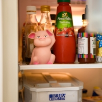 Fridge Piggy