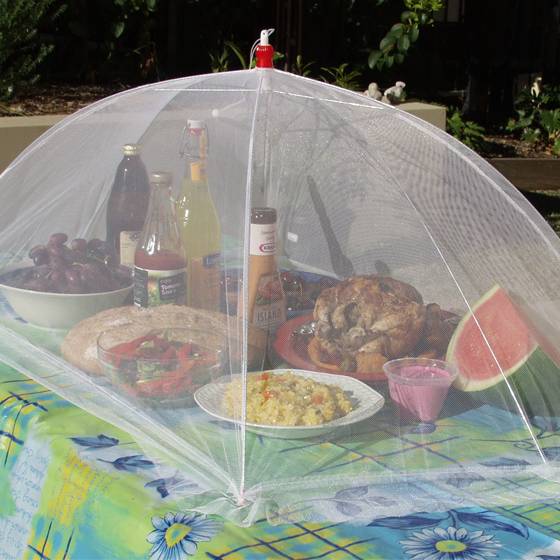 Health Pride Oversized Picnic Food Umbrella