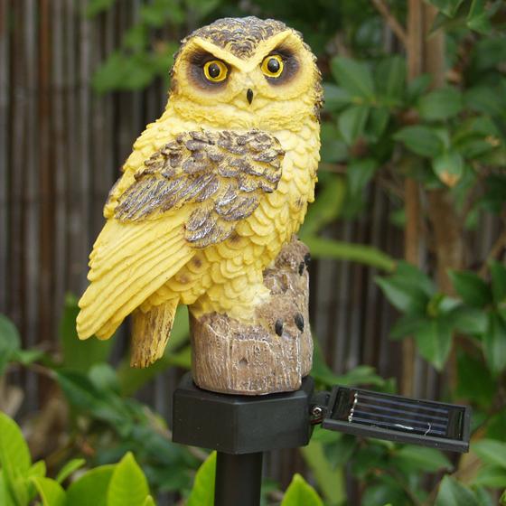 Health Pride Solar Owl